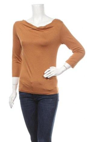 Γυναικεία μπλούζα Tex, Μέγεθος S, Χρώμα Καφέ, 95% βισκόζη, 5% ελαστάνη, Τιμή 9,09€