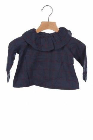 Детска блуза Gocco, Размер 6-9m/ 68-74 см, Цвят Син, Памук, Цена 5,88лв.