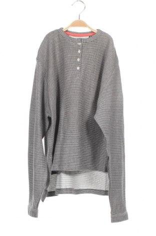 Παιδική μπλούζα Gocco, Μέγεθος 13-14y/ 164-168 εκ., Χρώμα Γκρί, 76% βαμβάκι, 24% πολυεστέρας, Τιμή 8,16€