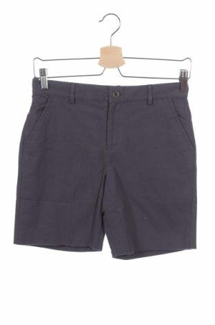 Παιδικό κοντό παντελόνι Gocco, Μέγεθος 11-12y/ 152-158 εκ., Χρώμα Γκρί, Βαμβάκι, Τιμή 10,05€