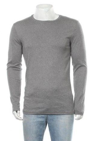 Ανδρική μπλούζα Tezenis, Μέγεθος XL, Χρώμα Γκρί, Βαμβάκι, Τιμή 9,35€