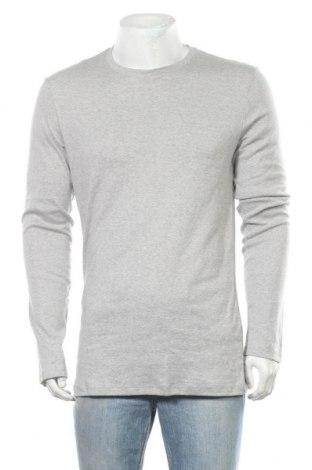 Ανδρική μπλούζα Tezenis, Μέγεθος XXL, Χρώμα Γκρί, Βαμβάκι, Τιμή 10,49€