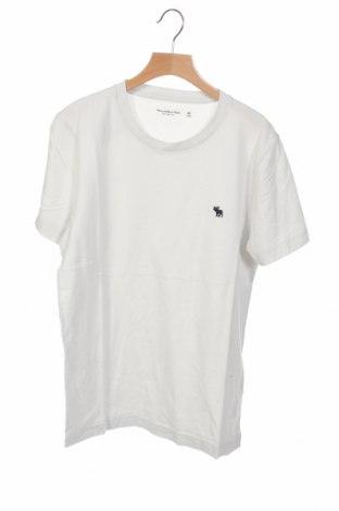 Ανδρικό t-shirt Abercrombie & Fitch, Μέγεθος XS, Χρώμα Γκρί, 100% βαμβάκι, Τιμή 20,10€