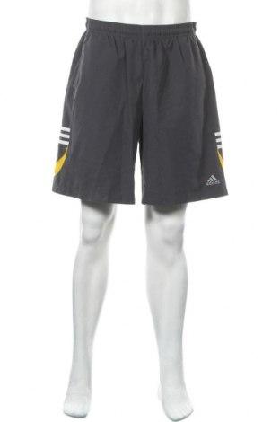 Ανδρικό κοντό παντελόνι Adidas, Μέγεθος XL, Χρώμα Γκρί, Πολυεστέρας, Τιμή 15,59€