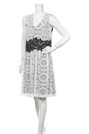 Φόρεμα New York & Company, Μέγεθος S, Χρώμα Εκρού, 70% πολυαμίδη, 30% βαμβάκι, Τιμή 40,27€