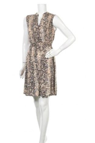 Φόρεμα Yessica, Μέγεθος S, Χρώμα Πολύχρωμο, Τιμή 16,05€