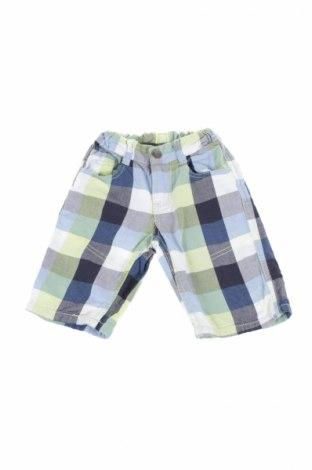 Pantaloni de copii Palomino