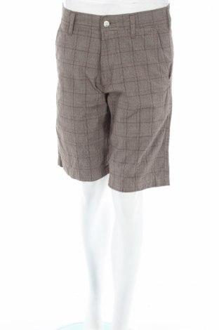 Дамски къс панталон Carhartt