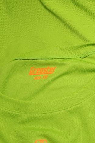 Мъжка тениска Gregster, Размер XXL, Цвят Зелен, Полиестер, Цена 7,80лв.