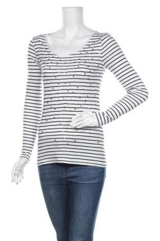 Γυναικεία μπλούζα Ann Taylor, Μέγεθος S, Χρώμα Λευκό, Τιμή 18,70€