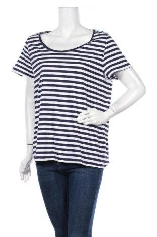 Γυναικεία μπλούζα B Collection, Μέγεθος XL, Χρώμα Μπλέ, Βαμβάκι, Τιμή 11,69€