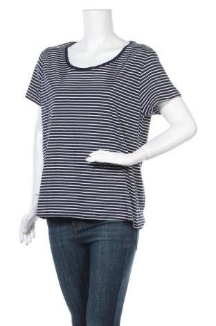 Γυναικεία μπλούζα B Collection, Μέγεθος XL, Χρώμα Μπλέ, Βαμβάκι, Τιμή 14,81€