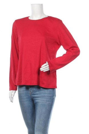Γυναικεία μπλούζα Christopher & Banks, Μέγεθος L, Χρώμα Κόκκινο, Βαμβάκι, Τιμή 7,60€