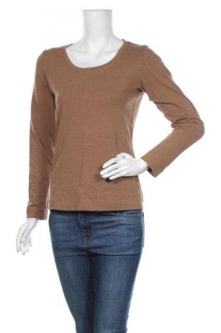 Дамска блуза Colours Of The World, Размер M, Цвят Бежов, 95% памук, 5% еластан, Цена 18,90лв.