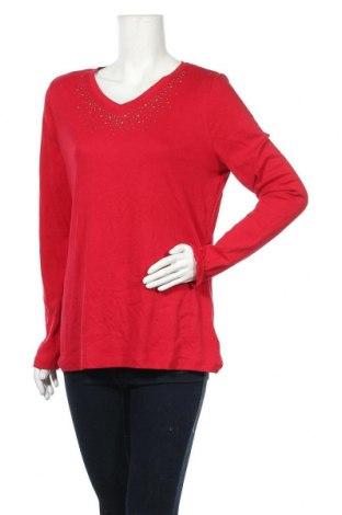 Γυναικεία μπλούζα Faded Glory, Μέγεθος XXL, Χρώμα Κόκκινο, 97% βαμβάκι, 3% ελαστάνη, Τιμή 8,83€