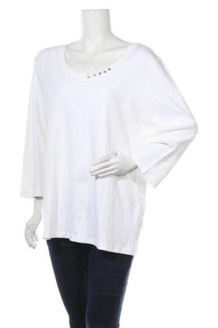 Дамска блуза Karen Scott, Размер XXL, Цвят Бял, Памук, Цена 20,58лв.