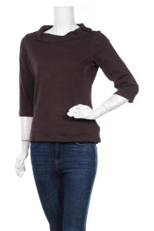 Γυναικεία μπλούζα Kenny S., Μέγεθος M, Χρώμα Καφέ, Βαμβάκι, Τιμή 10,49€