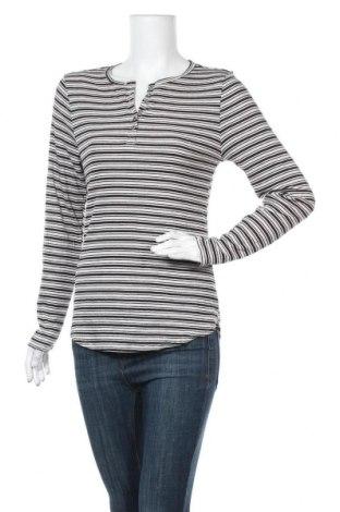 Γυναικεία μπλούζα Mix, Μέγεθος XL, Χρώμα Γκρί, Πολυεστέρας, βισκόζη, ελαστάνη, Τιμή 8,83€
