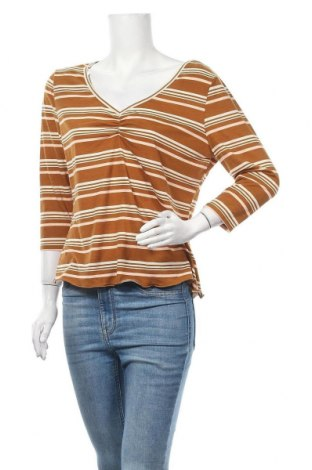 Дамска блуза Mudd, Размер XL, Цвят Кафяв, 96% полиестер, 4% еластан, Цена 3,00лв.