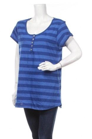 Γυναικεία μπλούζα Now, Μέγεθος XXL, Χρώμα Μπλέ, Βαμβάκι, πολυεστέρας, Τιμή 18,19€