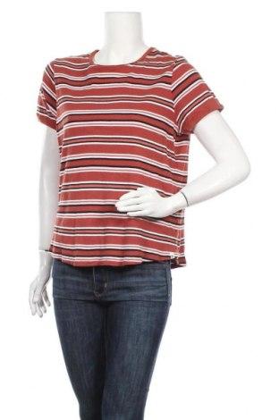 Γυναικεία μπλούζα Piping Hot, Μέγεθος XXL, Χρώμα Πολύχρωμο, Βαμβάκι, ελαστάνη, Τιμή 9,09€