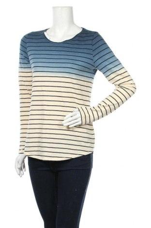 Γυναικεία μπλούζα Sonoma, Μέγεθος S, Χρώμα Πολύχρωμο, 60% βαμβάκι, 40% πολυεστέρας, Τιμή 12,96€