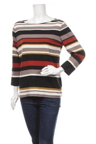 Γυναικεία μπλούζα Suzanne Grae, Μέγεθος XL, Χρώμα Πολύχρωμο, Βαμβάκι, πολυεστέρας, Τιμή 10,39€