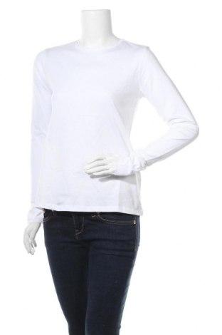 Γυναικεία μπλούζα Trendyol, Μέγεθος S, Χρώμα Λευκό, Βαμβάκι, Τιμή 12,02€