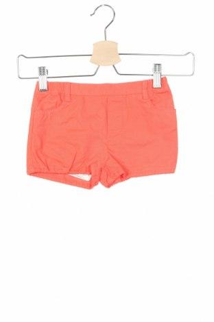 Παιδικό κοντό παντελόνι Neck & Neck, Μέγεθος 6-9m/ 68-74 εκ., Χρώμα Πορτοκαλί, Βαμβάκι, Τιμή 11,39€