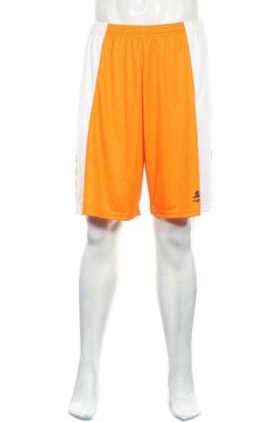 Ανδρικό κοντό παντελόνι Capelli, Μέγεθος XL, Χρώμα Πορτοκαλί, Πολυεστέρας, Τιμή 17,66€