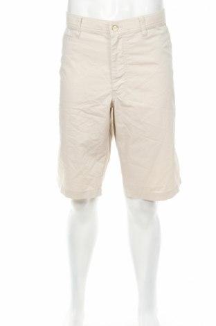 Ανδρικό κοντό παντελόνι Alberto