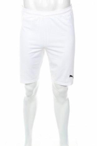 Мъжки къс панталон PUMA, Размер L, Цвят Бял, 94% полиестер, 6% еластан, Цена 15,69лв.