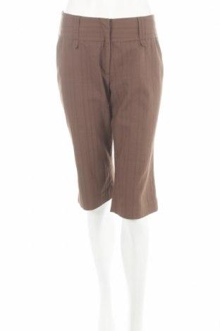 Дамски панталон Casa Blanca, Размер S, Цвят Кафяв, 67% памук, 30% полиестер, 3% еластан, Цена 6,30лв.