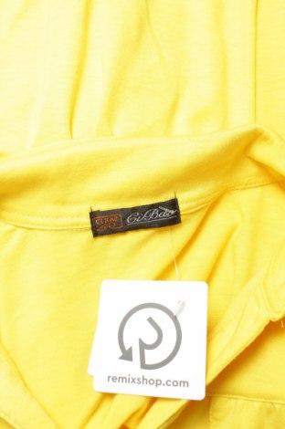 Γυναικείο πουκάμισο, Μέγεθος M, Χρώμα Κίτρινο, 80% βαμβάκι, 15% πολυεστέρας, 5% ελαστάνη, Τιμή 10,80€