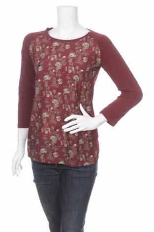 Дамска блуза Atlas For Women
