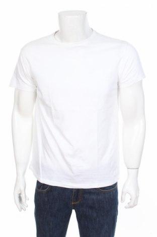 Мъжка тениска Cedar Wood State