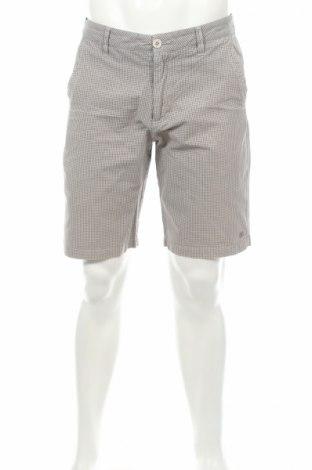 Мъжки къс панталон DC Shoes