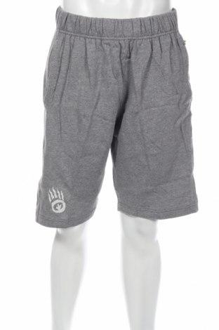 Мъжки къс панталон Pro Kennex, Размер XL, Цвят Сив, Памук, Цена 11,34лв.