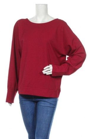 Γυναικεία μπλούζα Ann Taylor, Μέγεθος L, Χρώμα Ρόζ , Τιμή 13,25€