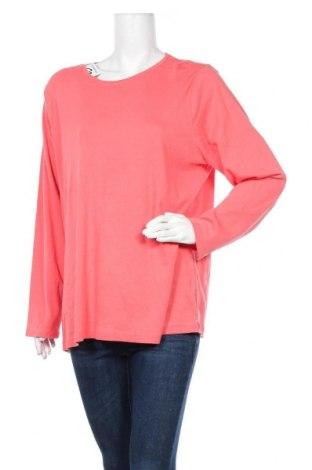 Γυναικεία μπλούζα Croft & Barrow, Μέγεθος XXL, Χρώμα Κόκκινο, Βαμβάκι, Τιμή 11,11€
