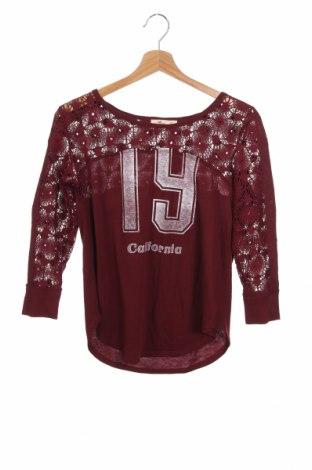 Γυναικεία μπλούζα Hollister, Μέγεθος XS, Χρώμα Κόκκινο, Τιμή 10,67€