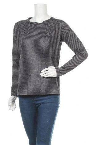Γυναικεία μπλούζα Lacoste, Μέγεθος L, Χρώμα Μπλέ, 65% βαμβάκι, 35% πολυεστέρας, Τιμή 12,53€