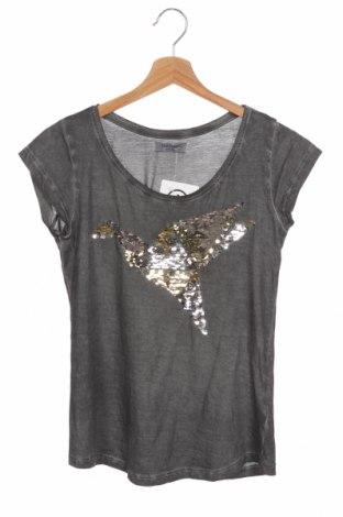 Γυναικείο t-shirt Sublevel, Μέγεθος XS, Χρώμα Γκρί, Βαμβάκι, Τιμή 9,09€