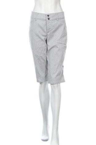 Дамски къс панталон Charter Club, Размер M, Цвят Сив, 98% памук, 2% еластан, Цена 16,96лв.