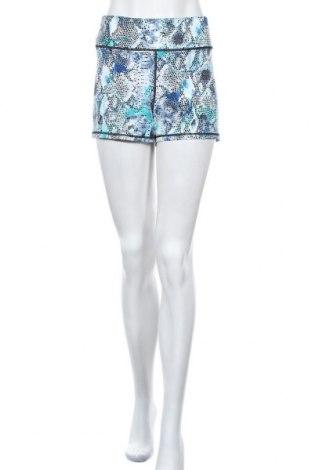 Γυναικείο κοντό παντελόνι Piping Hot, Μέγεθος XL, Χρώμα Πολύχρωμο, 88% πολυεστέρας, 12% ελαστάνη, Τιμή 10,39€