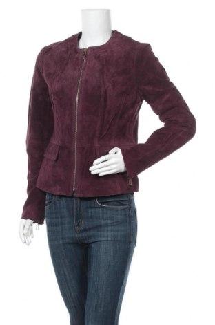 Γυναικείο δερμάτινο μπουφάν Orsay, Μέγεθος L, Χρώμα Βιολετί, Φυσικό σουέτ, Τιμή 42,14€