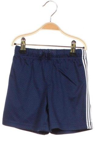 Παιδικό κοντό παντελόνι Oshkosh, Μέγεθος 2-3y/ 98-104 εκ., Χρώμα Μπλέ, Πολυεστέρας, Τιμή 8,41€