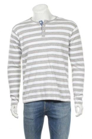 Ανδρική μπλούζα Identic, Μέγεθος L, Χρώμα Γκρί, 95% βαμβάκι, 5% βισκόζη, Τιμή 9,35€