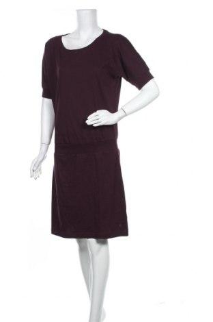 Φόρεμα Tchibo, Μέγεθος S, Χρώμα Βιολετί, 50% βαμβάκι, 50% πολυεστέρας, Τιμή 23,45€