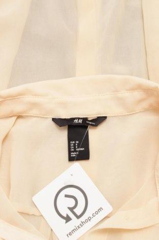 Γυναικείο πουκάμισο H&M, Μέγεθος M, Χρώμα Πορτοκαλί, 100% πολυεστέρας, Τιμή 15,46€